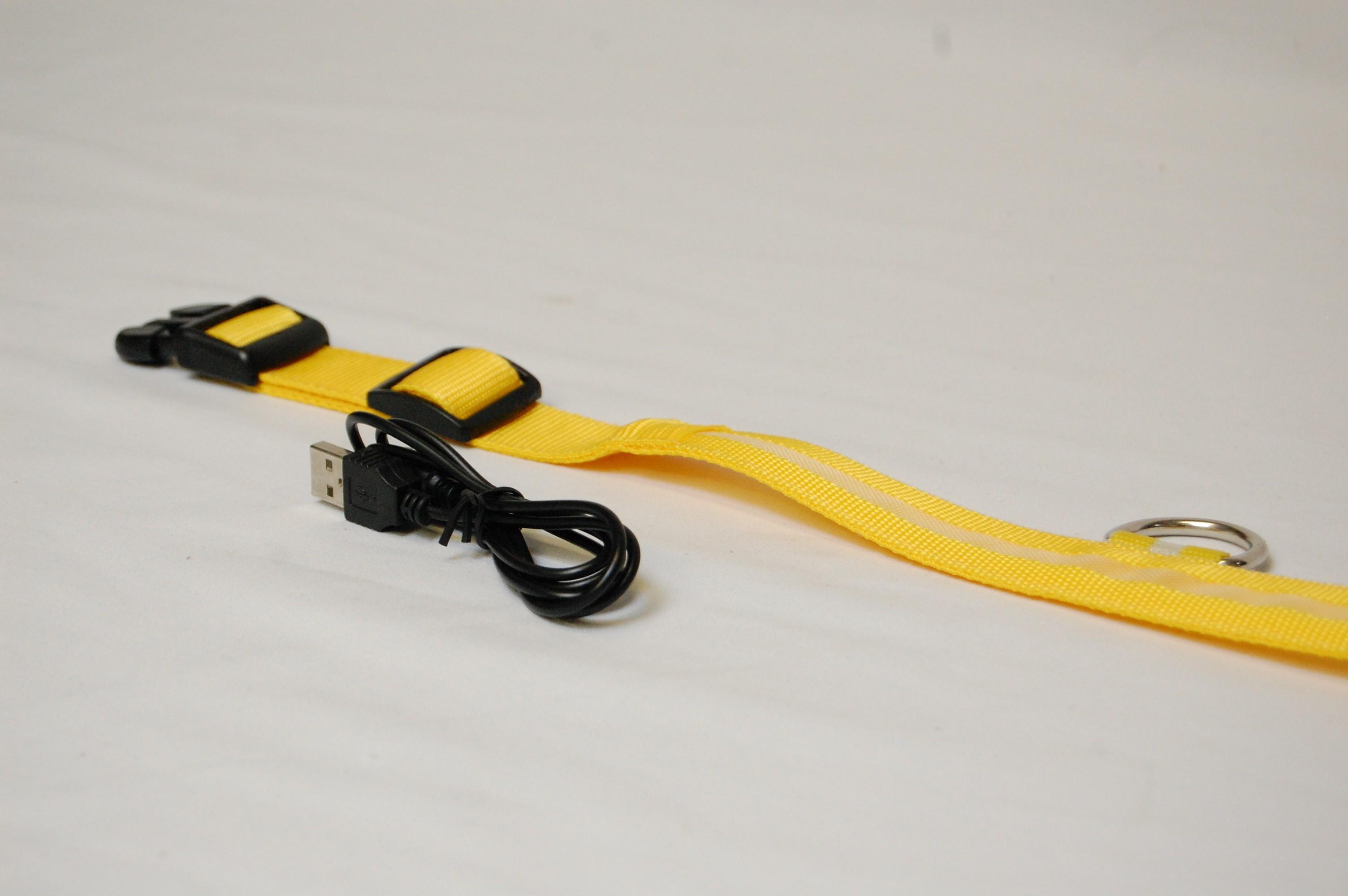 Hondenhalsband met LED verlichting - Accu-Company