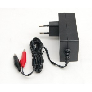 Battery charger for 12V lead batteries