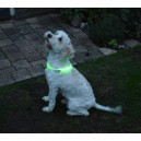 Led collar for the dog usb rechargeable