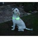 Led verlichtingsbuis voor de hond usb oplaadbaar